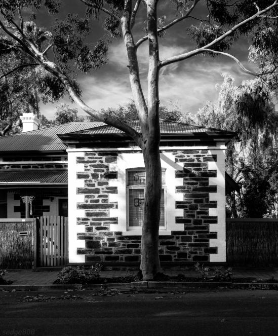 tree-house # 2