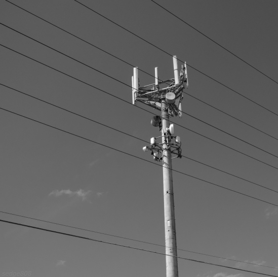 fone tower