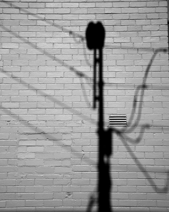 triffid shadow
