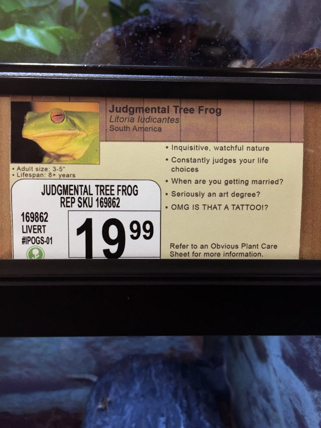 Guy Replaced Pet Names With New Funny Labels In His Local Pet Shop